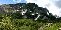 Альпийско-Карпатская горная страна